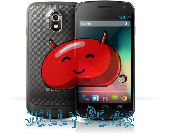 galaxy-nexus-jelly-bean