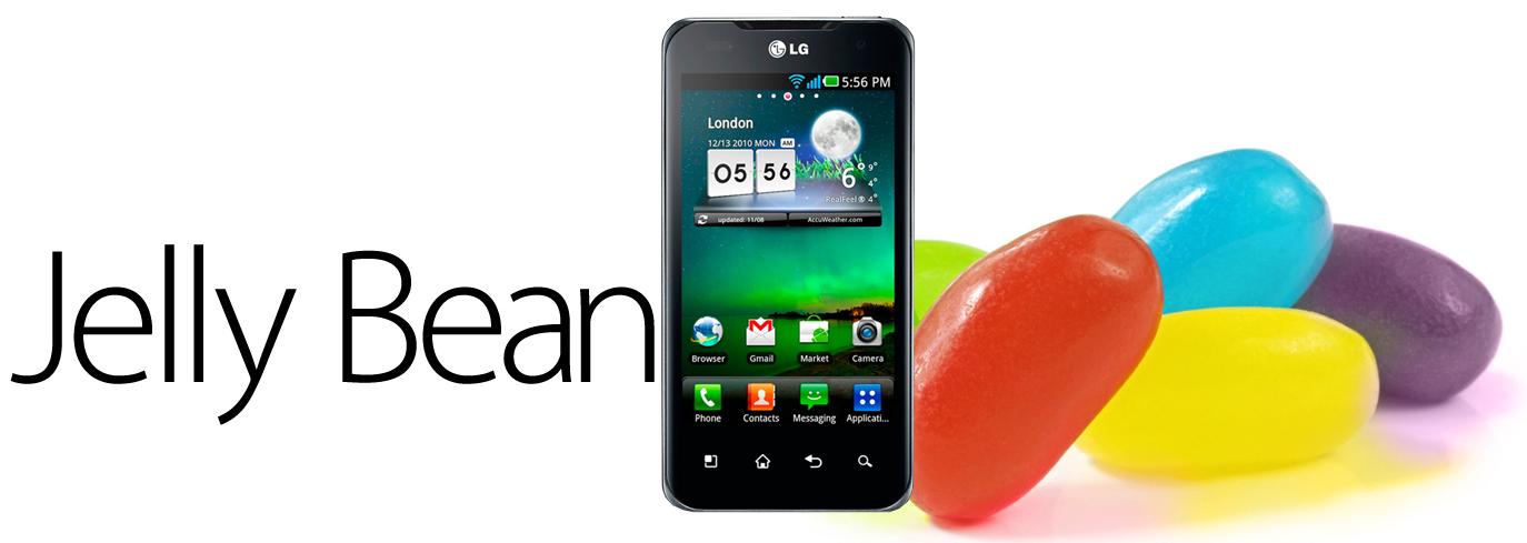 LG Dual Jelly Bean
