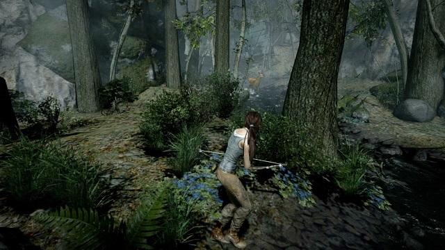 Tomb Raider Gameplay caccia