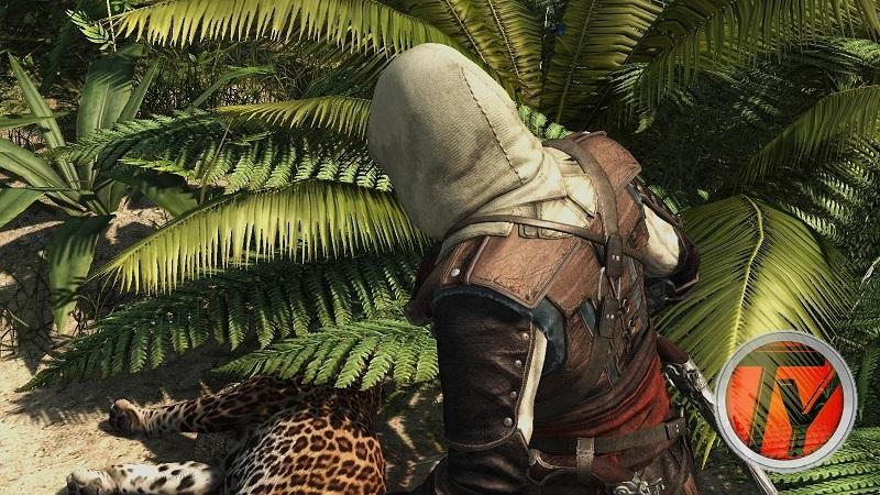 Assassin's Creed IV-Black Flag-Recensione-PC-Esplorazione