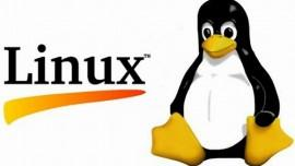 "Kernel Linux 4.0, arriva un antidoto ai ""bug"" di sistema"