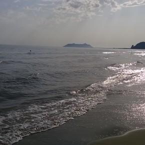 Foto-Lumia-630-3