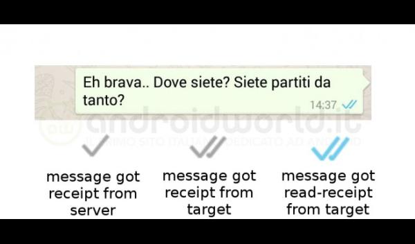 whatsapp-conferma-lettura-doppia-spunta-azzurra