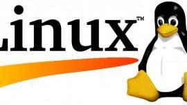 Come eseguire in Dual Boot una distro Linux e Windows 8