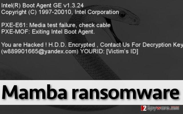 ransomware Mamba virus
